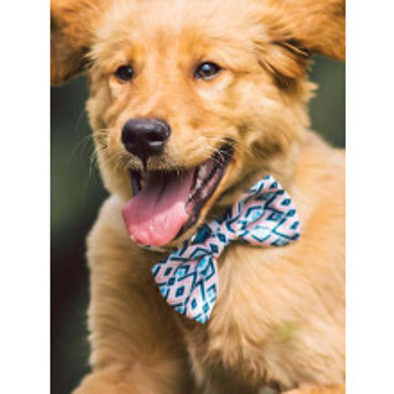 Branded Dog Ties